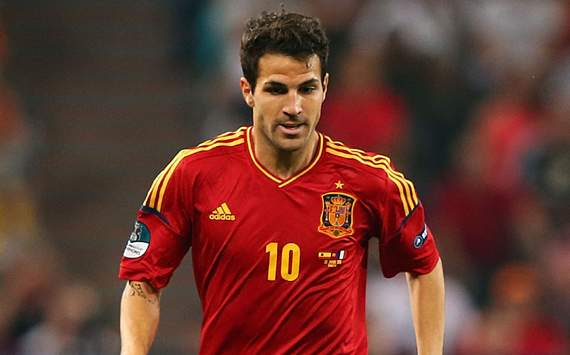 Spain taking Confeds Cup seriously - Cesc