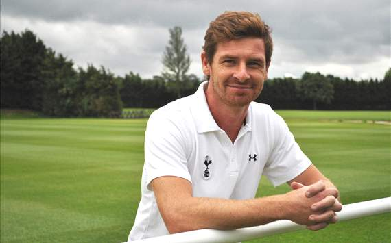 Race against time: Villas-Boas must act in transfer market to avoid yet another false dawn at Tottenham