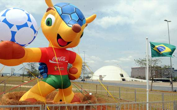 Fuleco, World Cup 2014 mascot