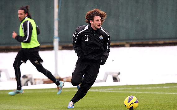 Newcastle captain Coloccini facing seven-week absence with back injury